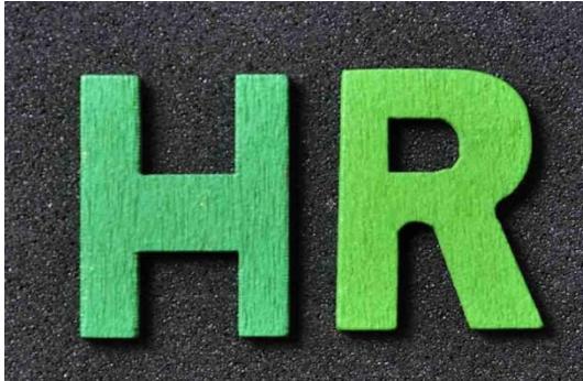 企业HR以及工资条管理